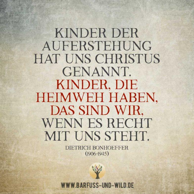 Kleine Weisheit (495)